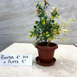 DLX Plastic Planter With Plate