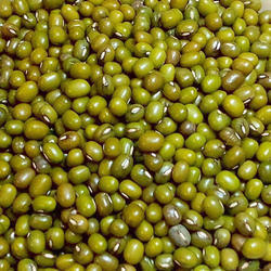 Whole Green Moong Dal, Packaging Size: 50 Kg, High in Protein