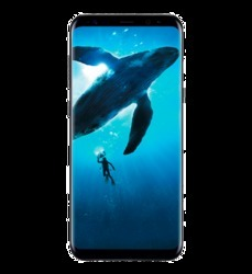 Samsung Galaxy S8, Memory Size: 4.7, Screen Size: 6.3