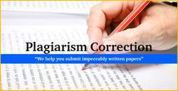 Plagiarism Correction Service