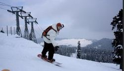 Skiing Services