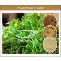 Natural Fenugreek Extract Fenugreek Gum Powder