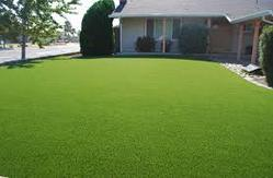 Artifical Lawn Grass