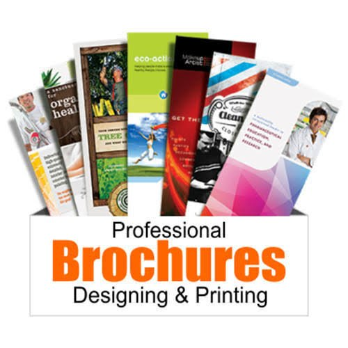 Brochure Printing Services, in India, Mehta Screen And Offset Printers | ID: 21615412997