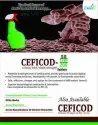 Allopathic PCD Pharma Franchise In Ajmer