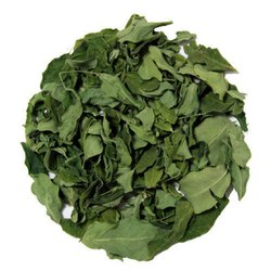 Moringa Leaves TBC - Sahijan TBC