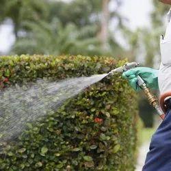 Biological Pest Control Services