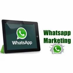 WhatsApp Marketing, Whatsapp Marketing Service, व्हाट्सप्प
