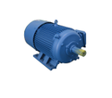 5 HP Three Phase AC Induction Motor