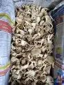 Powder Of Dry Mushroom Oyster