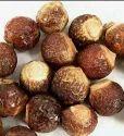 Soap Nut, Packaging Type: Bag, Packaging Size: 1-25 Kg