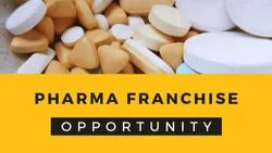 Pharmaceutical PCD Allopathic Pharma Franchise In Haryana