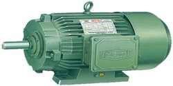 Three Phase Induction Motor (Standard)