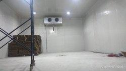 Cold Storage Plant Repairing Service