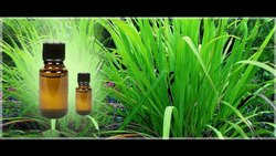 99% Pure Natural Essential Oil