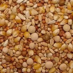 Pigeon Feed Mix: Grain Mixture Format