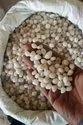 White Natural Polished Pebble