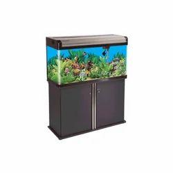 Glass BOYU Fish Tanks, Packaging Type: Box, Size: 3 Feet