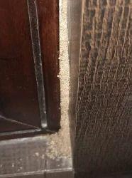 Post Construction Anti Termite Treatment Services, Ncr