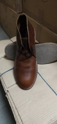 International Brad Formal Brand Shoes Pure Leather, Size: 8-12