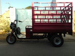 Jumbo Auto Rickshaw