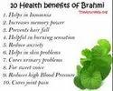 Nutrilite Brahmi  60 N Tablets