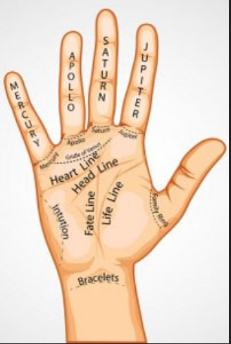 Saraswati Jyotish Center Service Provider Of Numerology Astrology Services Palmistry Astrology Services From Amritsar Here you can explore hq hands transparent illustrations, icons and clipart with filter setting like size, type, color etc. saraswati jyotish center service