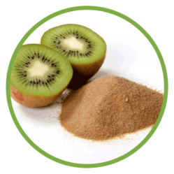 Kiwi Fruit Extract Powder