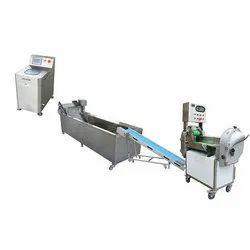 Fruit Washing Conveyor