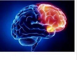 Neuro Surgery