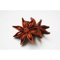 Star Anise For Cold Storage Rental Services