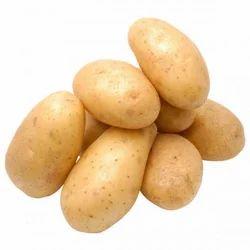 Haryana A Grade Fresh Potato, Packaging Size: 50 Kilogram