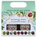 Combo Gift Pack of Multiflora Honey & Eucalyptus Honey 500g each