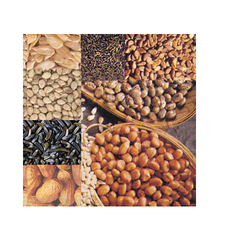 Asian Star Natural Oil Seeds