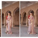 Fancy Designer Work Saree