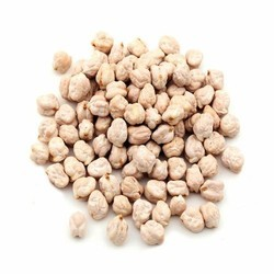 Organic White Chickpeas, Packaging Type: Poly Bag, Packaging Size: 10-50 Kg