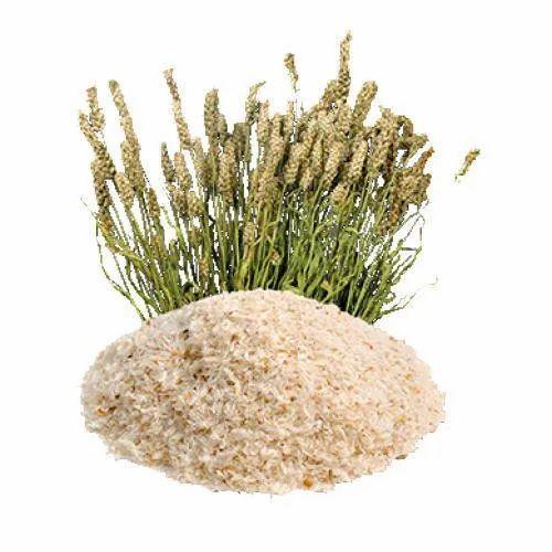 Psyllium Husk Powder, Grade: Food Grade, Packaging Size: 5 Kg, Rs 500 /kg |  ID: 21456533848