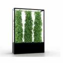 Indoor Vertical Plant