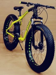 Green Black Jaguar Freedom Fat Tyre Cycle - Mountain Bike 26T