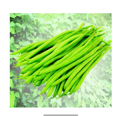 Suhani Beans