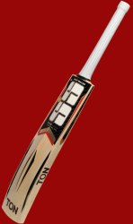 SS Cricket Bat English Willow Maximus