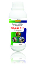 BIO-CAL B12 (Calcium With Zinc & Magnesium)