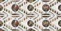 5018 HL1 Glossy Wall Tiles