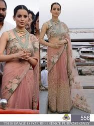 Embroidered Bollywood Net Saree