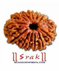 13 Mukhi Rudraksh Beads