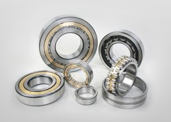 INA Cylindrical Roller Bearing
