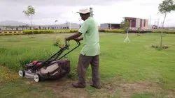 Garden Maintenance Services, in Pune