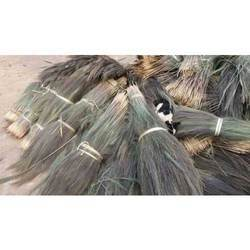 Shillong Broom Grass