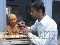 Gandhi Statues