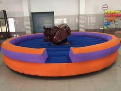 Amusement Bull Ride